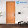 Cửa Nhựa Phòng Khách Sạn Veneer-1B-ash
