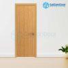 Cửa gỗ cao cấp Hàn Quốc 1PNC1
